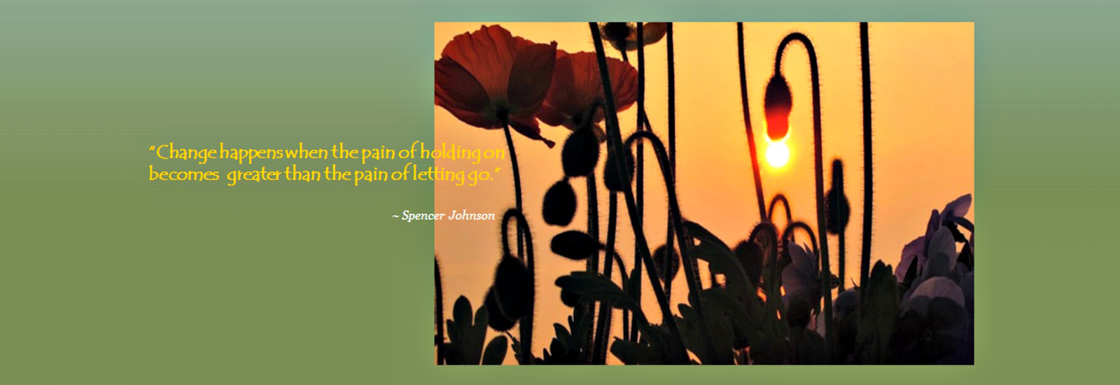 english_slide_5-sunset-and-poppies072516
