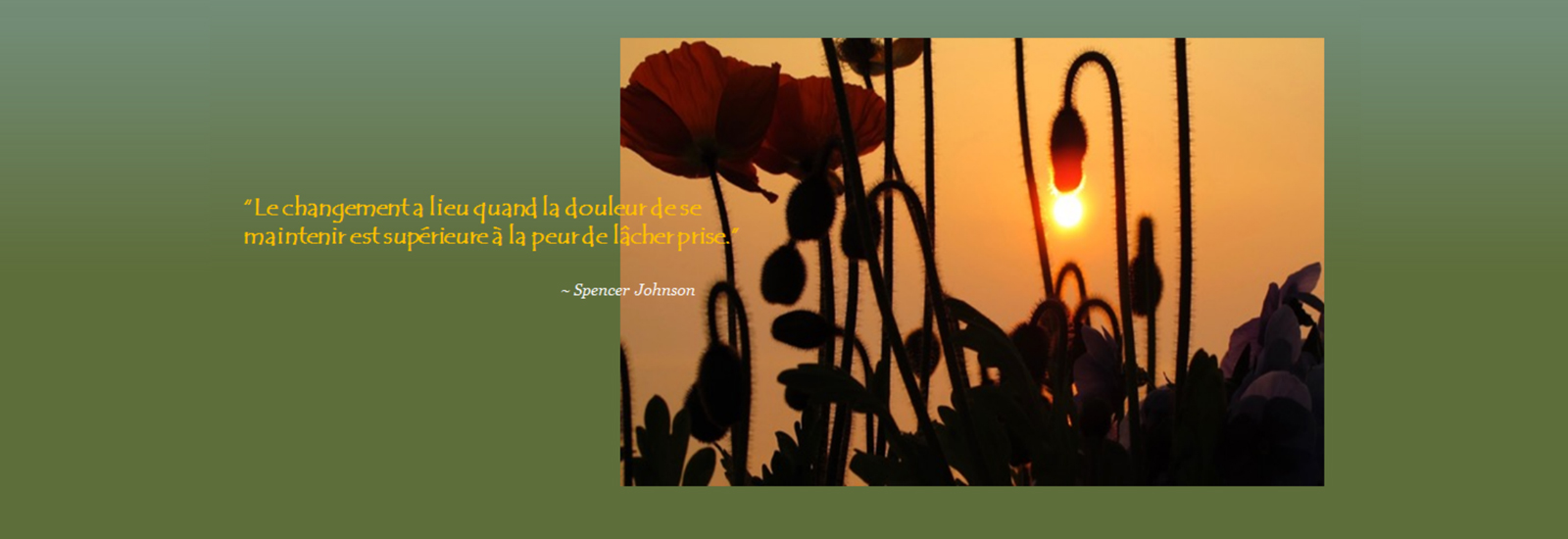 french_slide_5-sunset-and-poppies